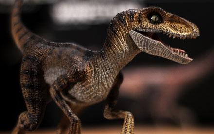Rebor Velociraptor Winston Unboxing Showcase
