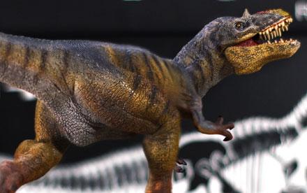 Rebor Yutyrannus Huali Y-Rex Unboxing Showcase